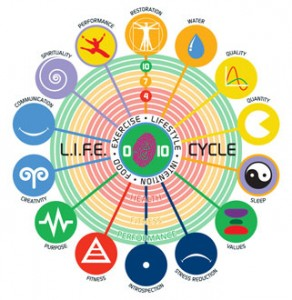 life-cycle-PS